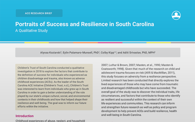 Portraits of Success and Resilience in South Carolina, A Qualitative Study