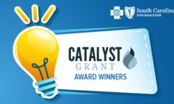 Catalyst Grant, BlueCross BlueShield Foundation of South Carolina