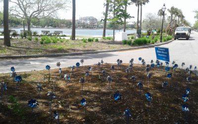 Charleston pinwheels