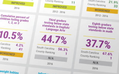 County-Data-Profile-sample-2018