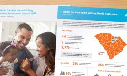 Home Visiting Needs Assessment summary and infographic