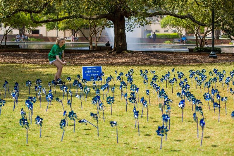 Kappa Delta pinwheel garden