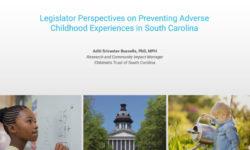 Legislative Perspectives on Preventing ACEs in SC