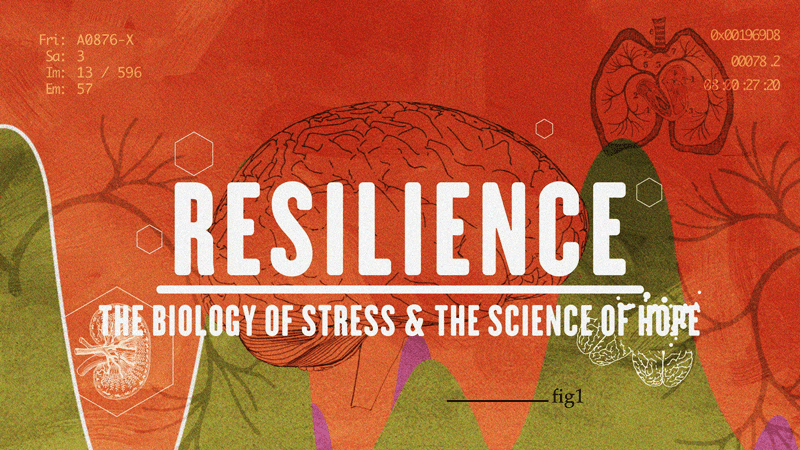 Resilience-The-biology-of-stress-and-the-science-of-hope