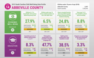 SC Child Well-Being Data Profile 2019
