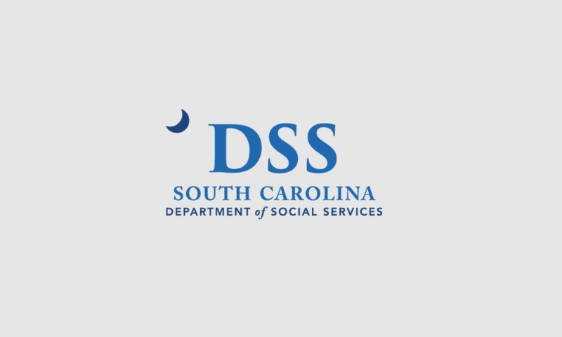 DSS logo with gray background